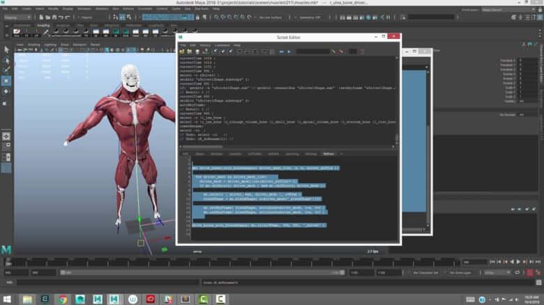 >Ziva VFX V1.3 for Maya 2014~2018 – MAYA真实角色软组织模拟插件
